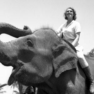 Aloha Wanderwell on Elephant