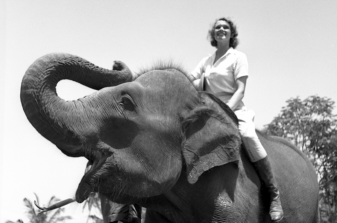 Aloha Wanderwell on Elephant